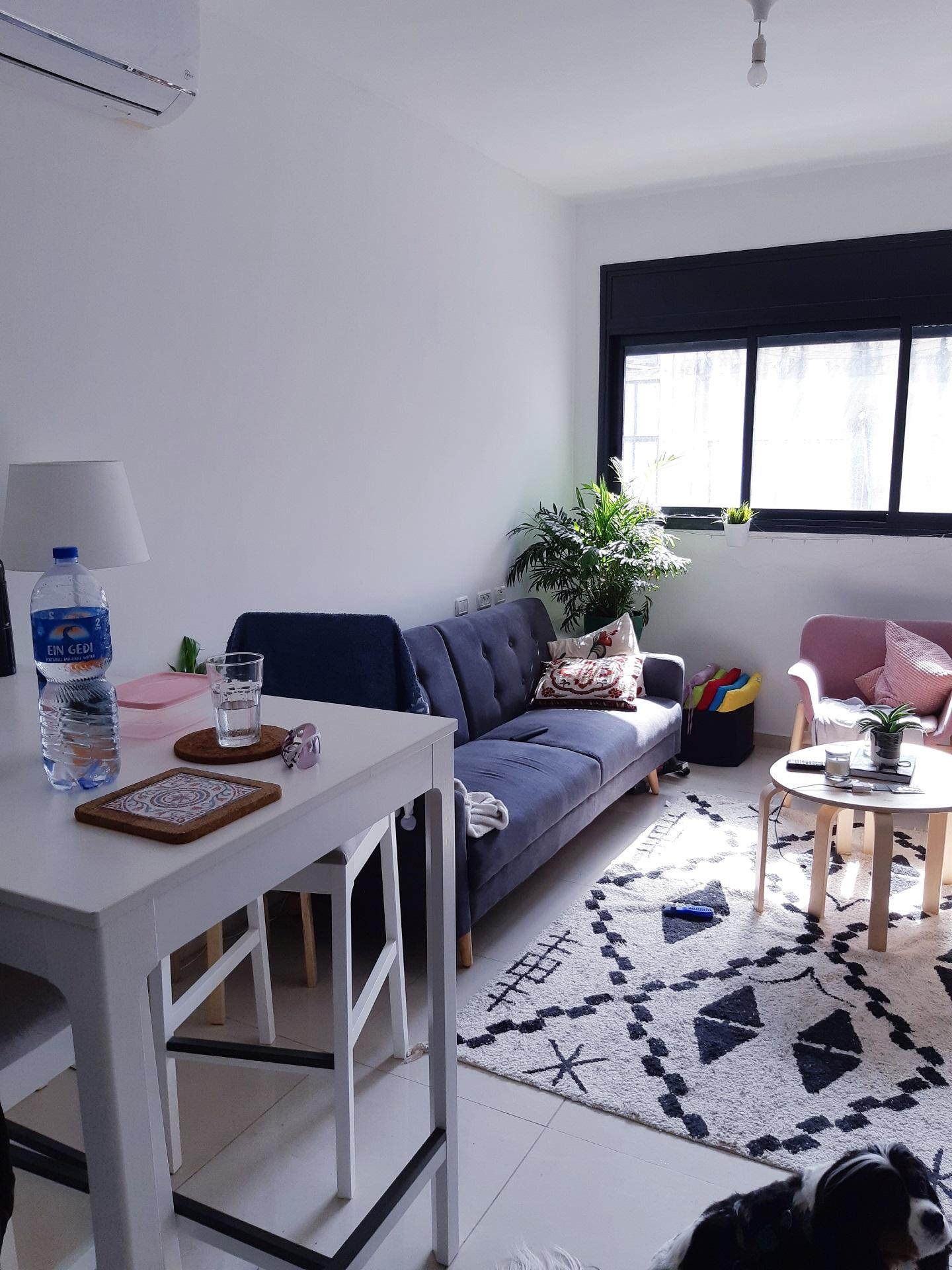 Appartement 2 pièces Rothschild salon
